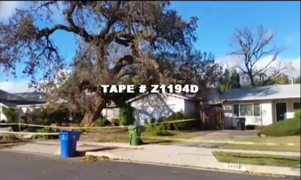 Tape # Z1194D