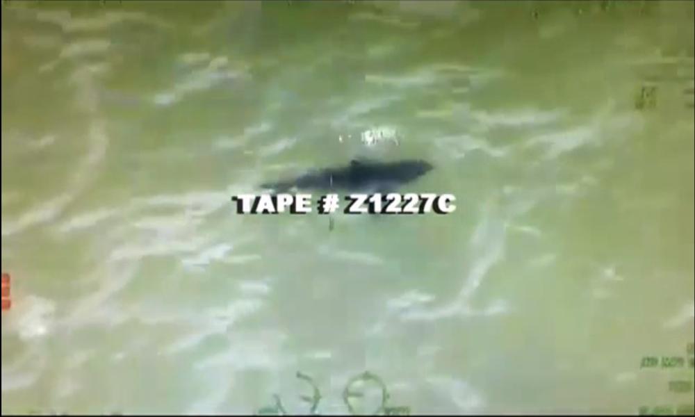 Tape # Z1227C