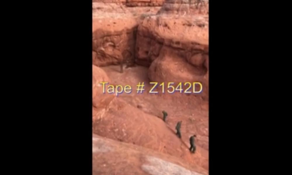 Tape # Z1542D